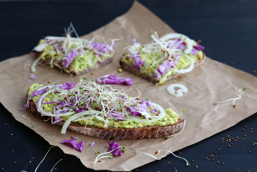Quick & fancy avocado toast with red cabbage, onion and alfalfa sprouts | Tofobo Family