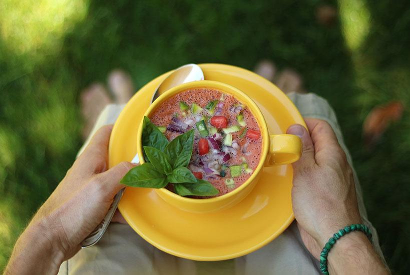 Summer Gazpacho Recipe (Raw, Vegan, Gluten-Free) | Tofobo Family