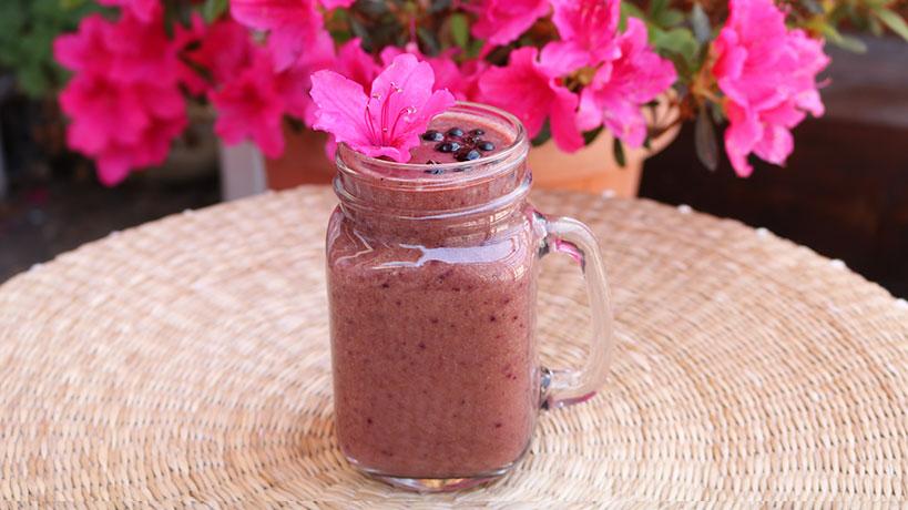Antioxidant rich Blueberry smoothie | Tofobo Family