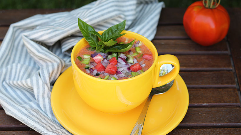 Summer Gazpacho Recipe (Raw, Vegan, Gluten-Free) | Tofobo Family