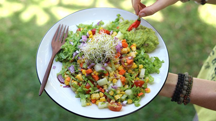 Easy Vegan Mexican Salad with Creamy Avocado Dip | Tofobo Family